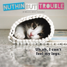 NUTHIN BUT TROUBLE 2019 SQUARE WALL CALE, Paperback Book