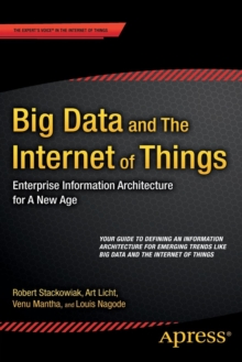 Big Data and The Internet of Things : Enterprise Information Architecture for A New Age, Paperback / softback Book