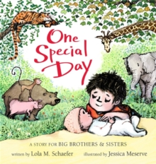 One Special Day : A Story for Big Brothers and Sisters, Board book Book