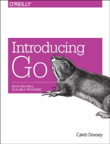 Introducing Go, Paperback Book