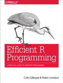 Efficient R Programming : A Practical Guide to Smarter Programming, PDF eBook