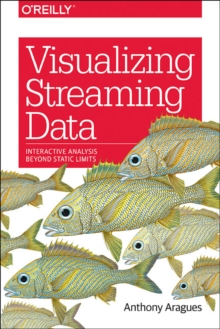 Visualizing Streaming Data, Paperback Book