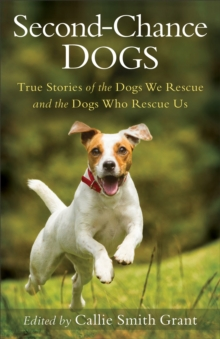 Second-Chance Dogs : True Stories of the Dogs We Rescue and the Dogs Who Rescue Us, EPUB eBook