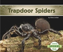 Trapdoor Spiders, Paperback Book