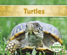 Turtles, Paperback Book