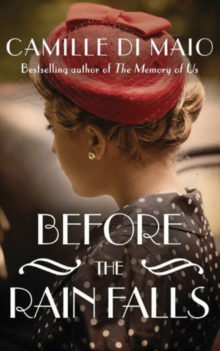 Before the Rain Falls : A Novel, Paperback Book