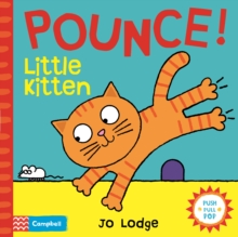 Pounce! Little Kitten : An Interactive Story Book, Board book Book