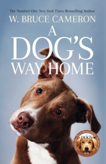 A Dog's Way Home : The Heartwarming Story of the Special Bond Between Man and Dog, Paperback Book