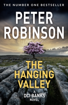 The Hanging Valley, Paperback / softback Book