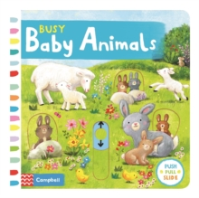 Busy Baby Animals, Board book Book