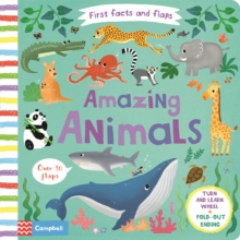 Amazing Animals, Board book Book
