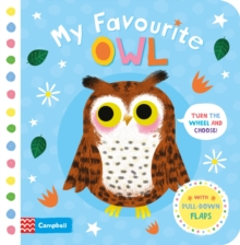 My Favourite Owl, Board book Book