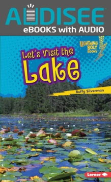 Let's Visit the Lake, EPUB eBook