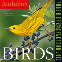 2019 Audubon Birds Colour Page-A-Day Calendar, Calendar Book