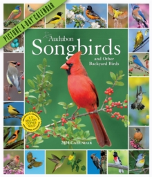 2020 Audubon Songbirds and Other Backyard Birds Picture-A-Day Calendar, Calendar Book