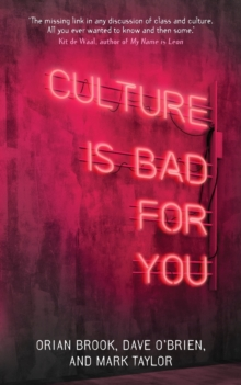 Culture is Bad for You : Inequality in the Cultural and Creative Industries, Paperback / softback Book
