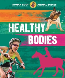 Human Body, Animal Bodies: Healthy Bodies, Hardback Book