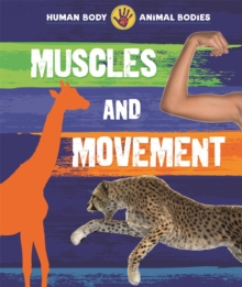Human Body, Animal Bodies: Muscles and Movement, Hardback Book