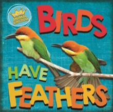 In the Animal Kingdom: Birds Have Feathers, Hardback Book