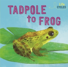 Life Cycles: From Tadpole to Frog, Hardback Book