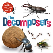 The Insects that Run Our World: The Decomposers, Hardback Book