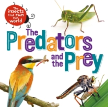 The Insects that Run Our World: The Predators and The Prey, Hardback Book