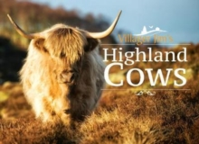Villager Jim's Highland Cows, Hardback Book