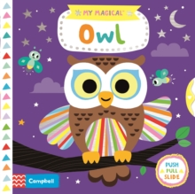 My Magical Owl, Board book Book