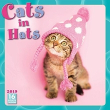 Cats In Hats W 2019, Paperback Book