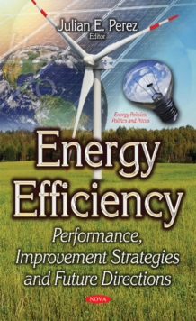 Energy Efficiency : Performance, Improvement Strategies & Future Directions, Paperback Book