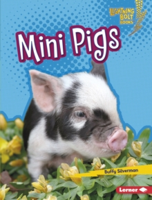 Mini Pigs, EPUB eBook