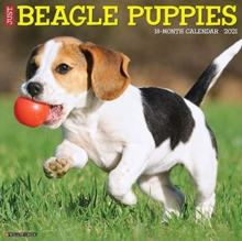 Just Beagle Puppies 2021 Wall Calendar (Dog Breed Calendar), Calendar Book