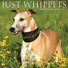 Just Whippets 2021 Wall Calendar (Dog Breed Calendar), Calendar Book