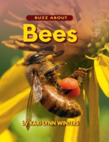 Buzz About Bees*****************, Hardback Book