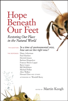Hope Beneath Our Feet, Paperback / softback Book