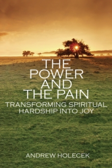 The Power And The Pain, Paperback Book