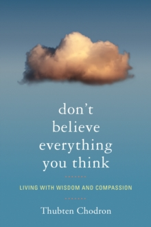 Don't Believe Everything You Think, Paperback Book