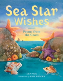 Sea Star Wishes, Hardback Book