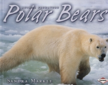 Polar Bears, Paperback Book