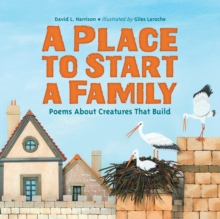 A Place To Start A Family, Hardback Book