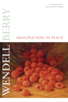 Imagination in Place, EPUB eBook
