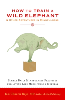 How To Train A Wild Elephant, Paperback Book