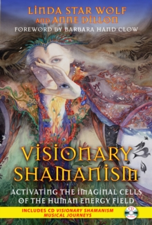 Visionary Shamanism : Activating the Imaginal Cells of the Human Energy Field, Paperback Book
