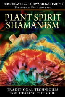 Plant Spirit Shamanism : Traditional Techniques for Healing the Soul, EPUB eBook