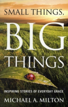 Small Things, Big Things : Inspiring Stories of Everyday Grace, Paperback Book