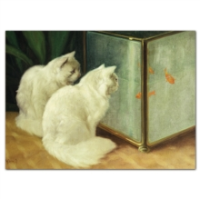 Notecard Boxes - Artful Cats, Cards Book