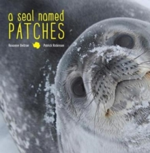 A Seal Named Patches, Hardback Book