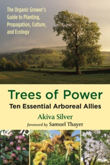 Trees of Power : Ten Essential  Arboreal Allies, Paperback / softback Book