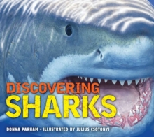 Discovering Sharks, Hardback Book