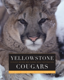 Yellowstone Cougars : Ecology before and during Wolf Restoration, PDF eBook